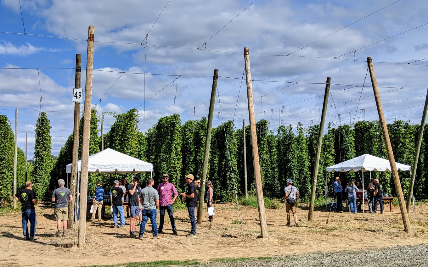 Hops Showcase Coleman Hop Terroir 2019