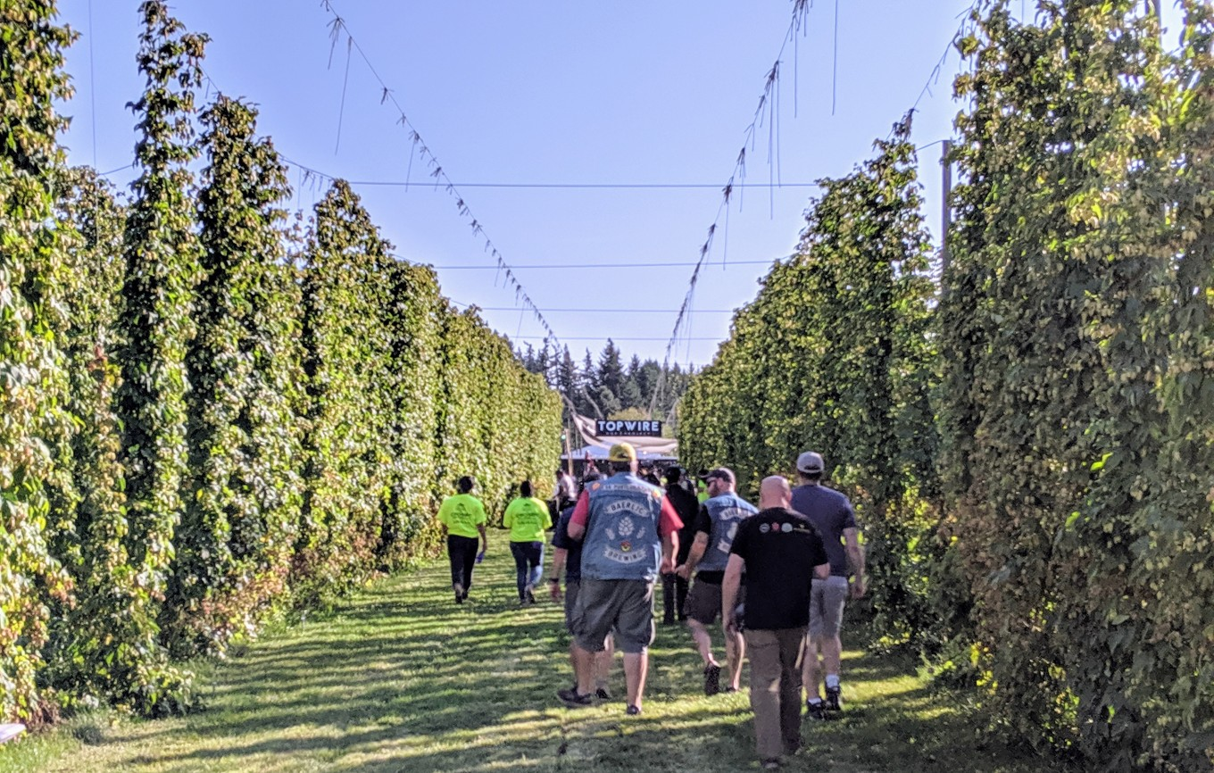 Crosby Hop Harvest Party 2019.jpg